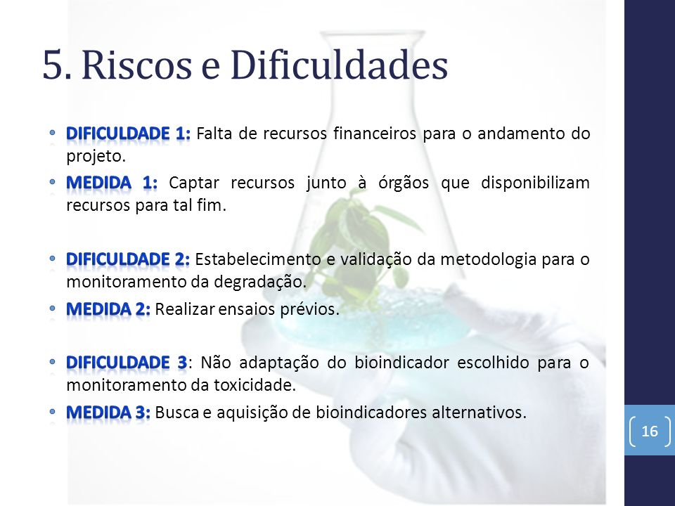 5. Riscos e Dificuldades Dificuldade 1: Falta de recursos financeiros para o andamento do projeto.