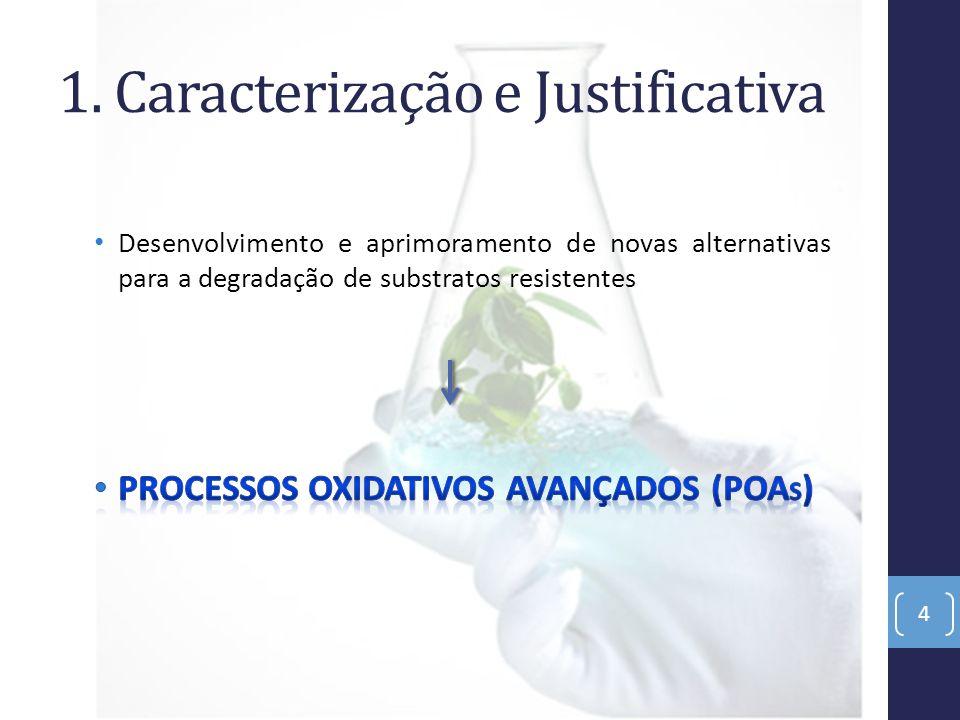 1. Caracterização e Justificativa