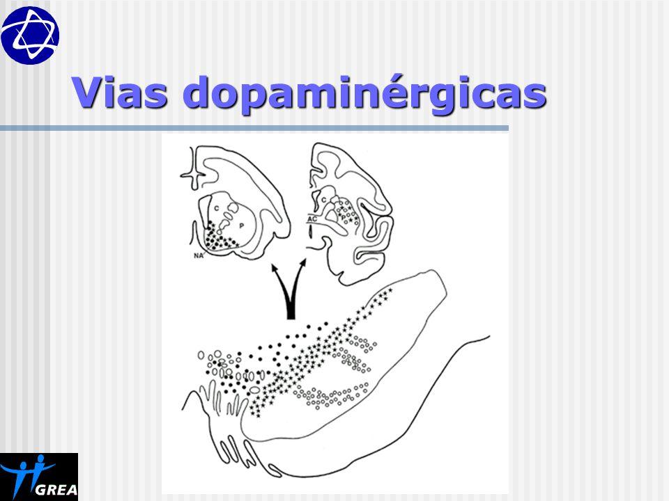 Vias dopaminérgicas