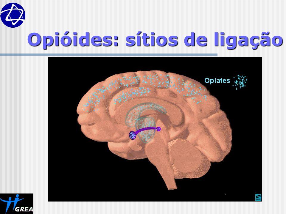 Opióides: sítios de ligação