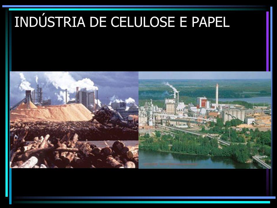 INDÚSTRIA DE CELULOSE E PAPEL