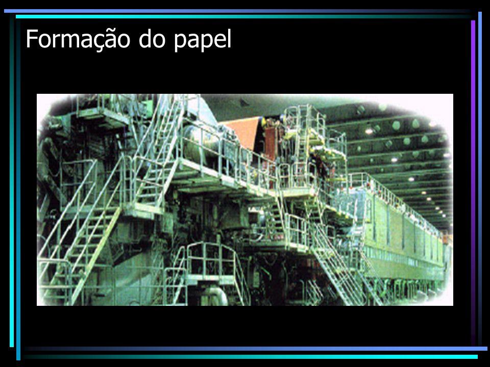 Formação do papel