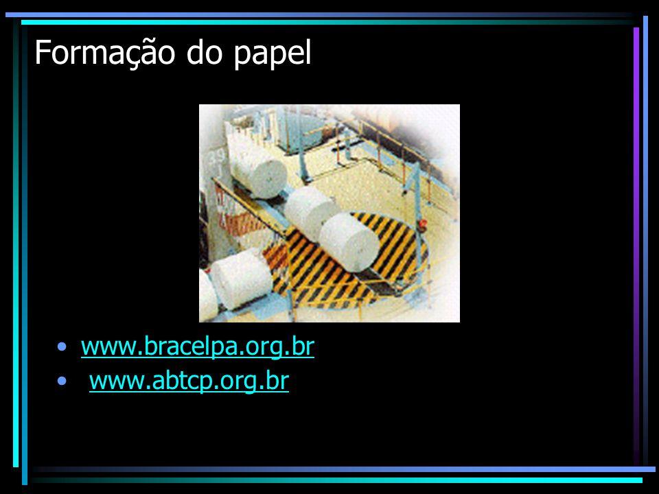 Formação do papel www.bracelpa.org.br www.abtcp.org.br
