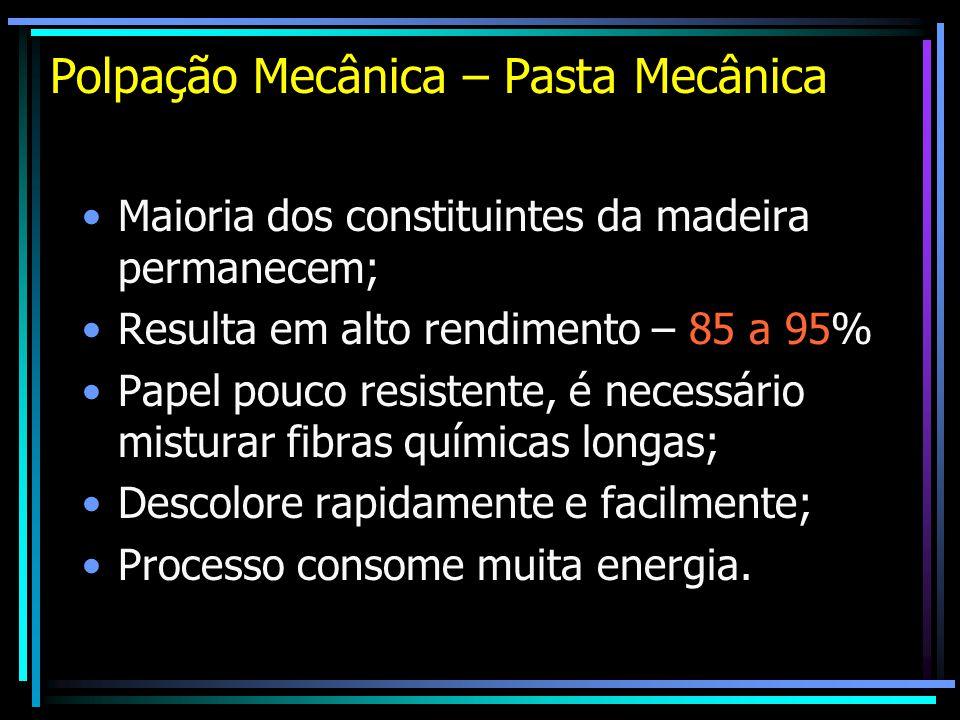 Polpação Mecânica – Pasta Mecânica