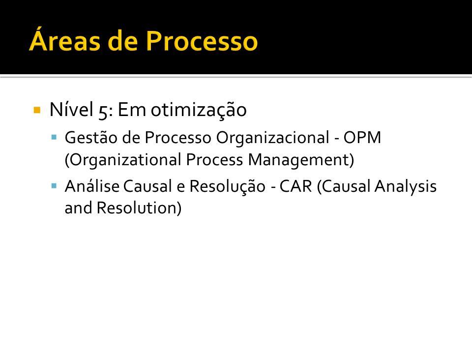 Áreas de Processo Nível 5: Em otimização