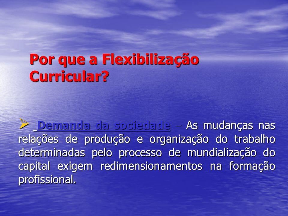 Por que a Flexibilização Curricular
