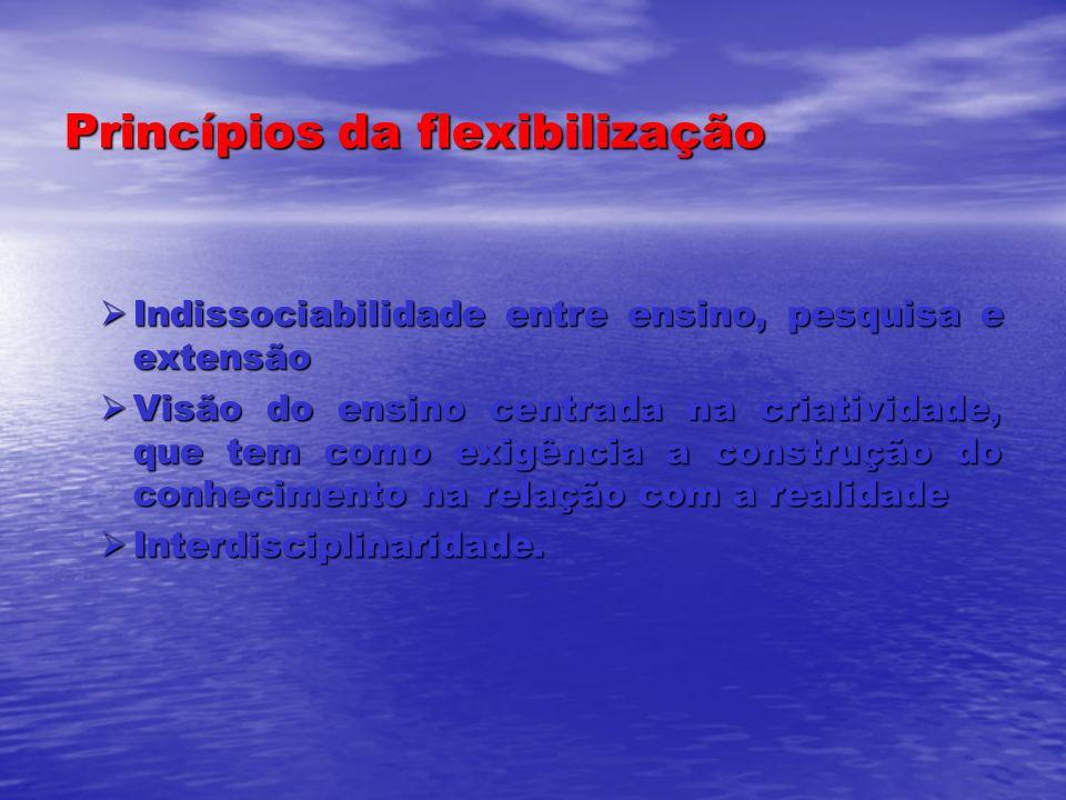 Princípios da flexibilização