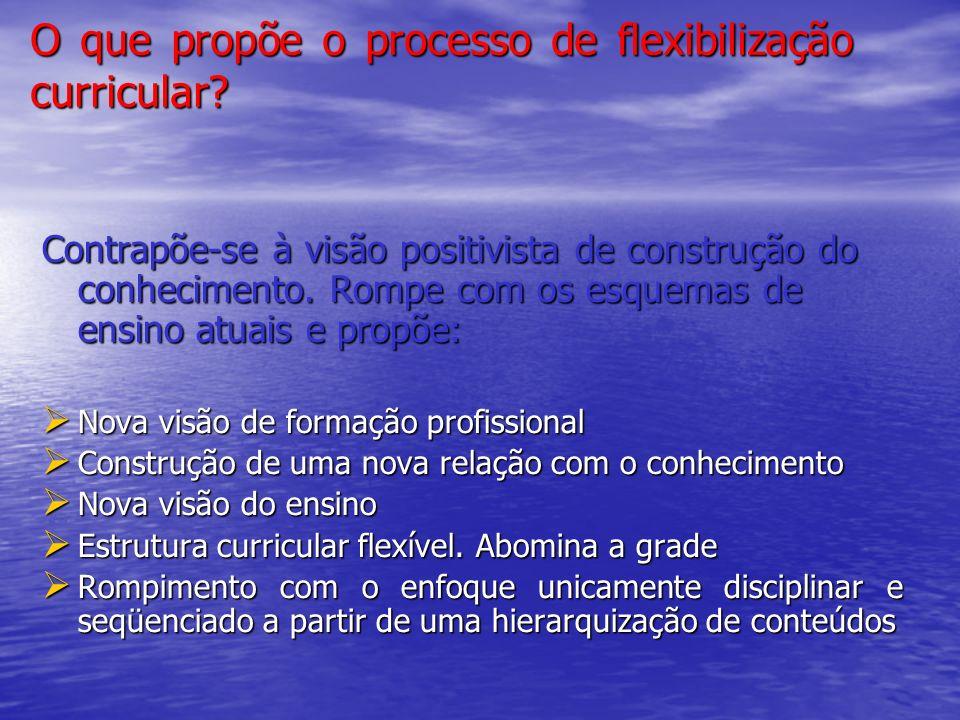 O que propõe o processo de flexibilização curricular