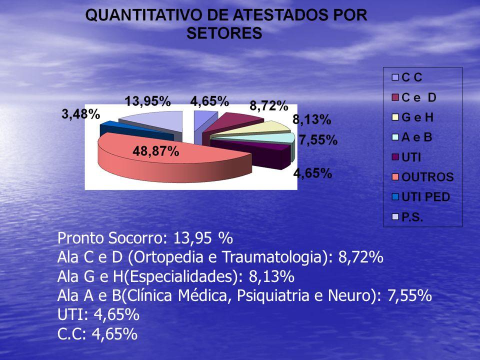 Pronto Socorro: 13,95 %Ala C e D (Ortopedia e Traumatologia): 8,72% Ala G e H(Especialidades): 8,13%