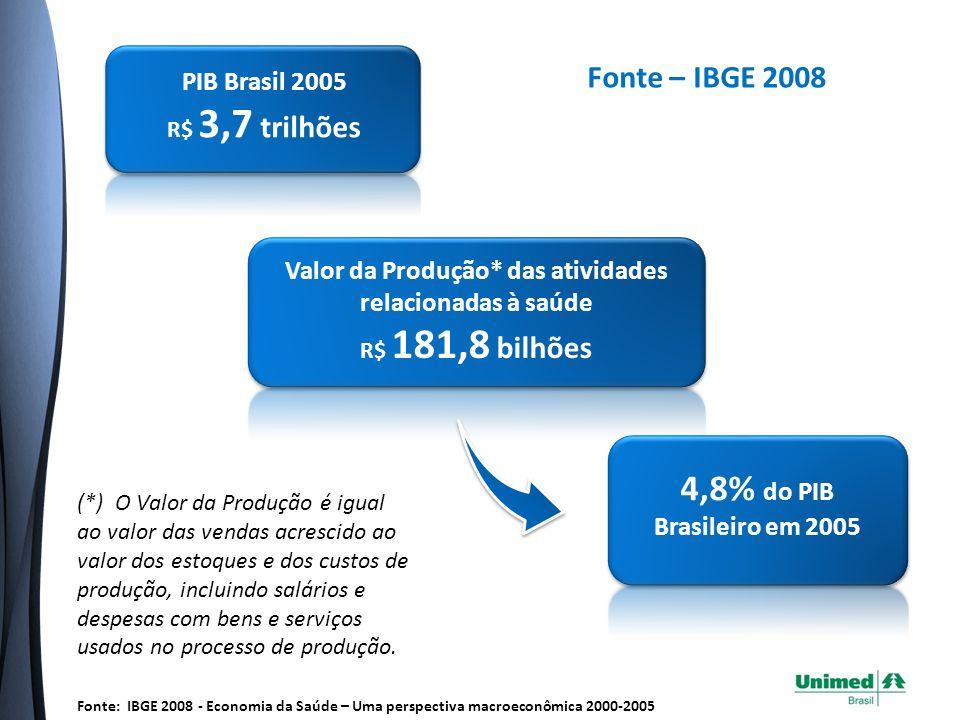4,8% do PIB Brasileiro em 2005 Fonte – IBGE 2008