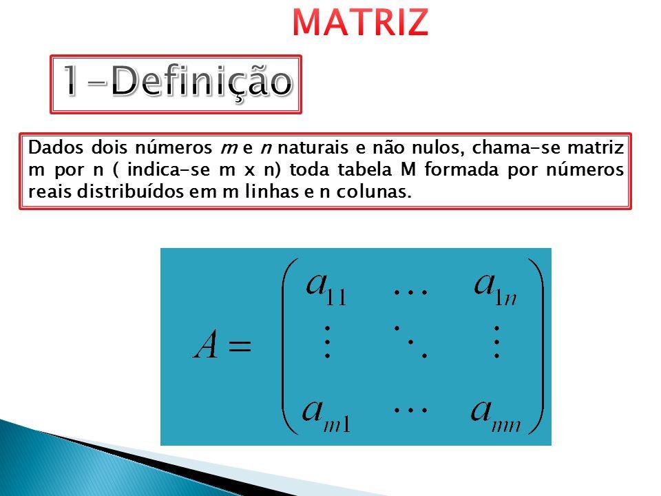 MATRIZ 1-Definição.