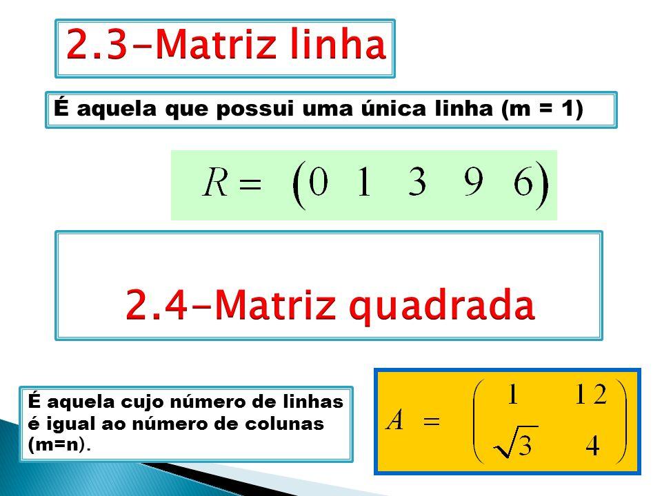 2.3-Matriz linha 2.4-Matriz quadrada