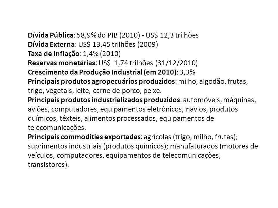 Dívida Pública: 58,9% do PIB (2010) - US$ 12,3 trilhões