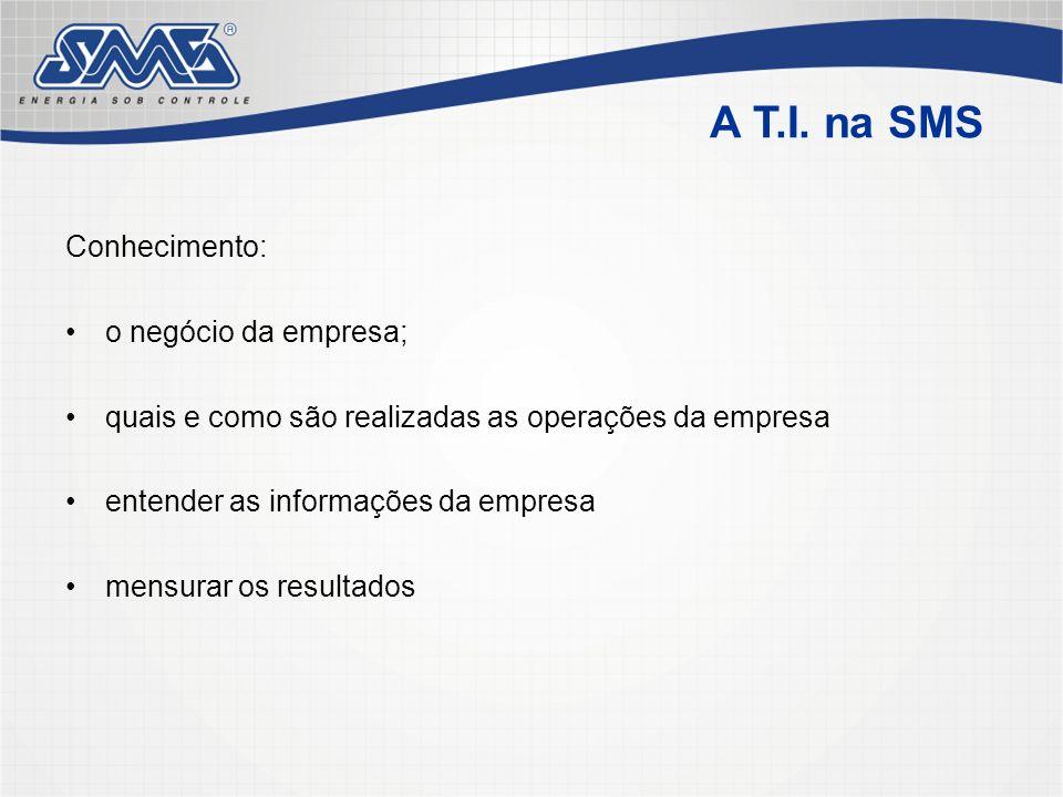 A T.I. na SMS Conhecimento: o negócio da empresa;