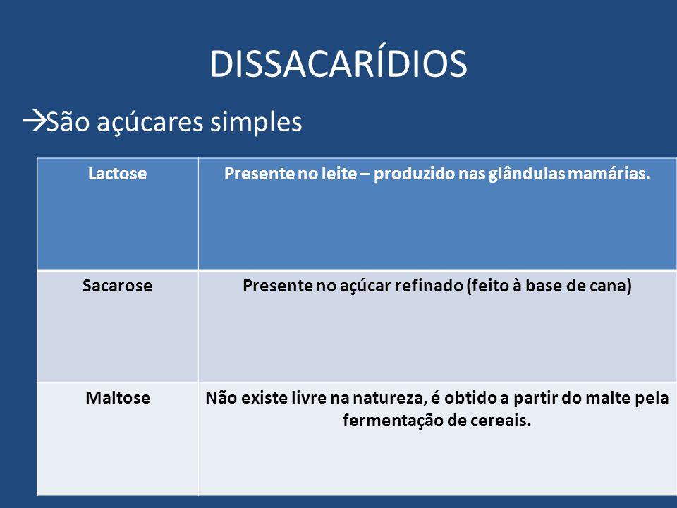 DISSACARÍDIOS São açúcares simples Lactose
