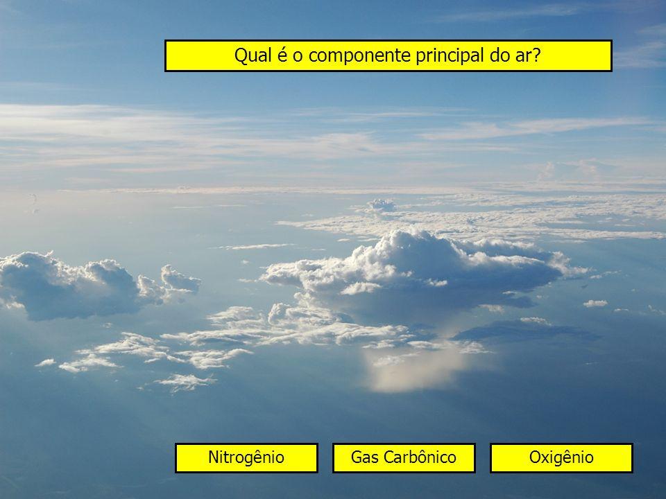 Qual é o componente principal do ar