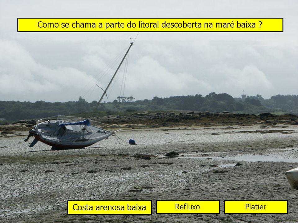 Como se chama a parte do litoral descoberta na maré baixa