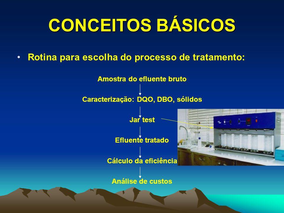 Amostra do efluente bruto Caracterização: DQO, DBO, sólidos