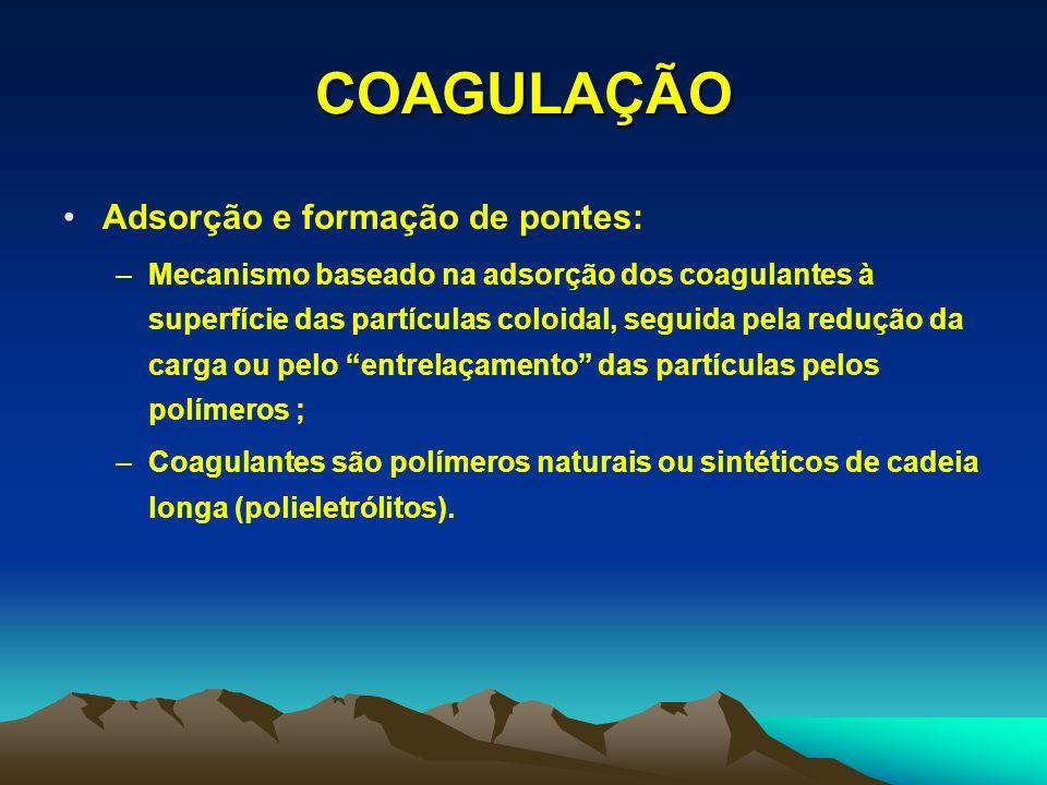 COAGULAÇÃO Adsorção e formação de pontes: