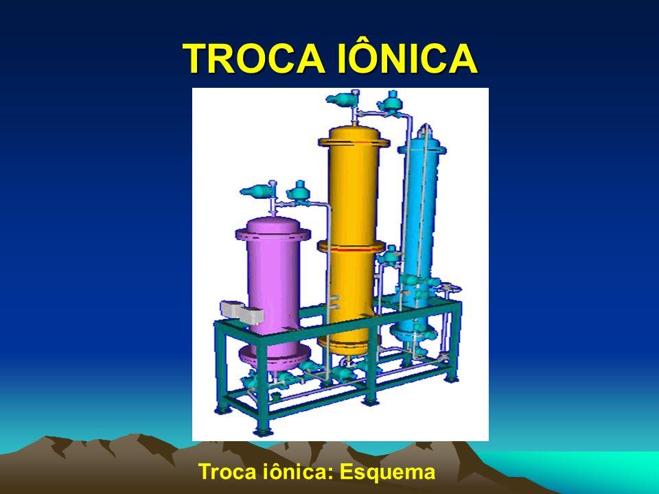 TROCA IÔNICA Troca iônica: Esquema