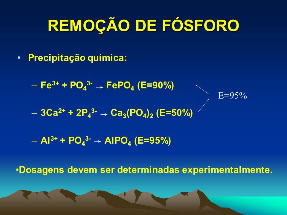 REMOÇÃO DE FÓSFORO Precipitação química: Fe3+ + PO43- FePO4 (E=90%)