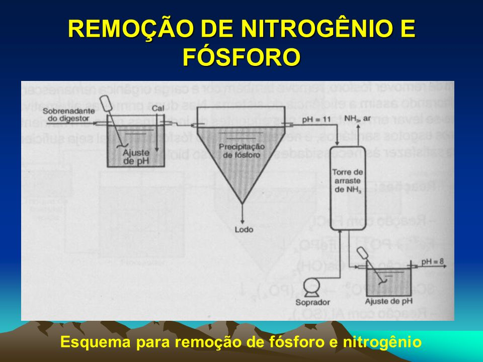 REMOÇÃO DE NITROGÊNIO E FÓSFORO