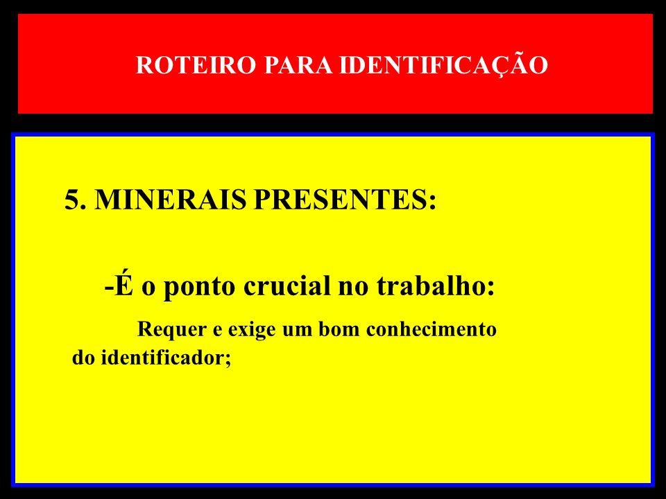 ROTEIRO PARA IDENTIFICAÇÃO