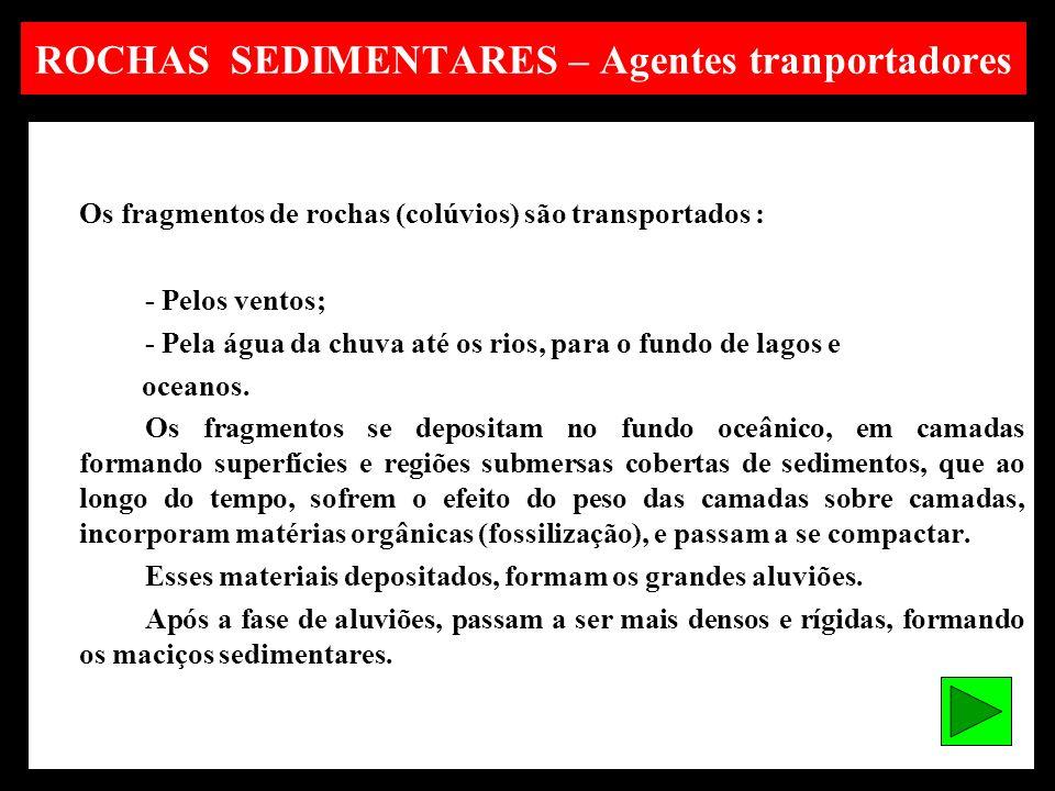 ROCHAS SEDIMENTARES – Agentes tranportadores