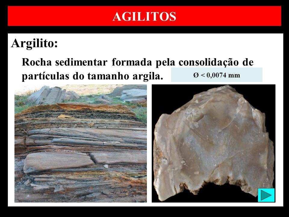AGILITOS Argilito: Rocha sedimentar formada pela consolidação de partículas do tamanho argila.