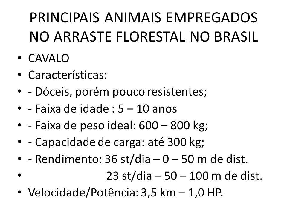 PRINCIPAIS ANIMAIS EMPREGADOS NO ARRASTE FLORESTAL NO BRASIL