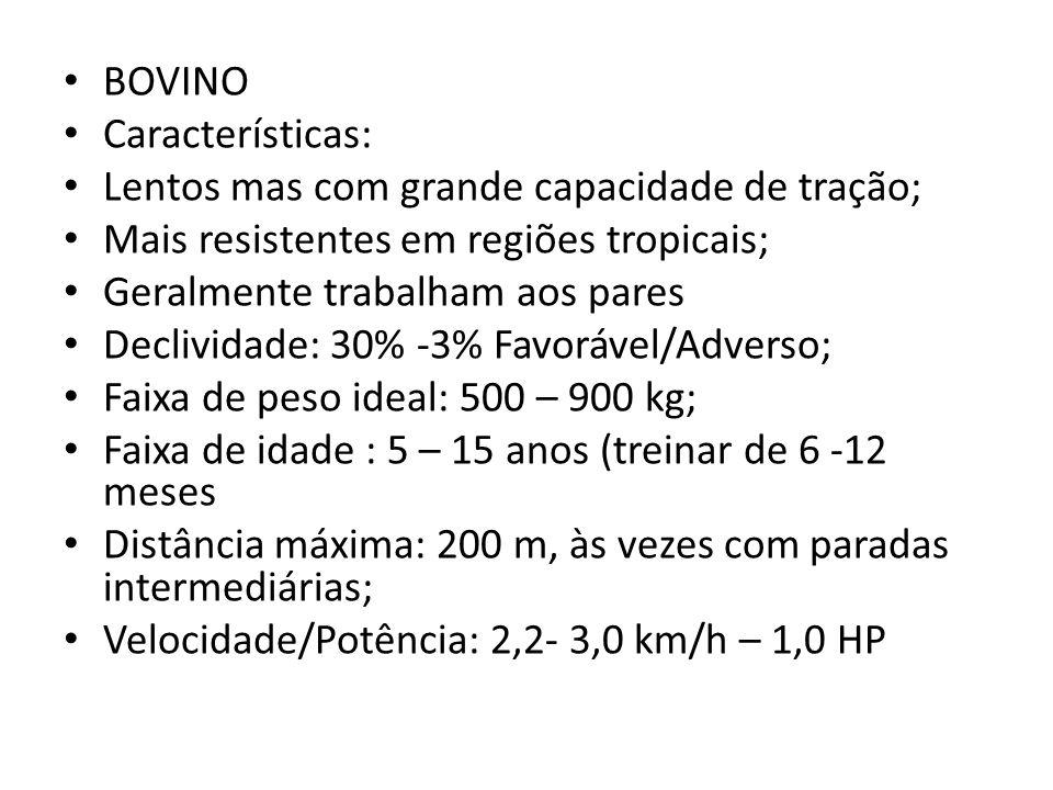 BOVINO Características: Lentos mas com grande capacidade de tração; Mais resistentes em regiões tropicais;