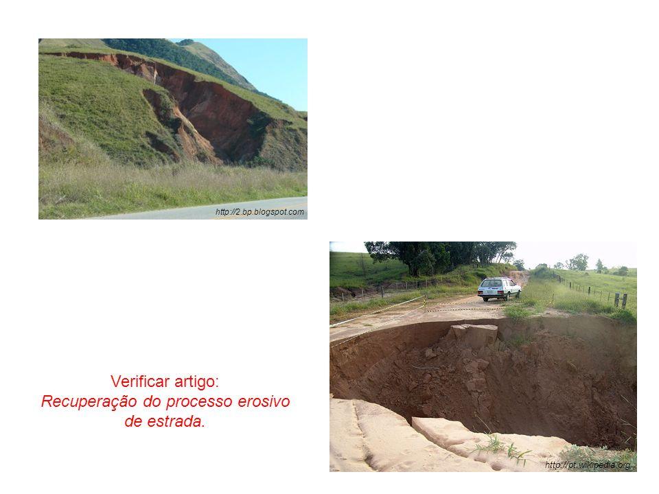 Recuperação do processo erosivo de estrada.
