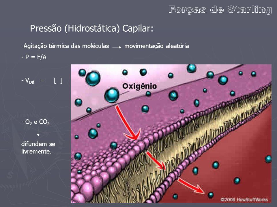 Forças de Starling Pressão (Hidrostática) Capilar: