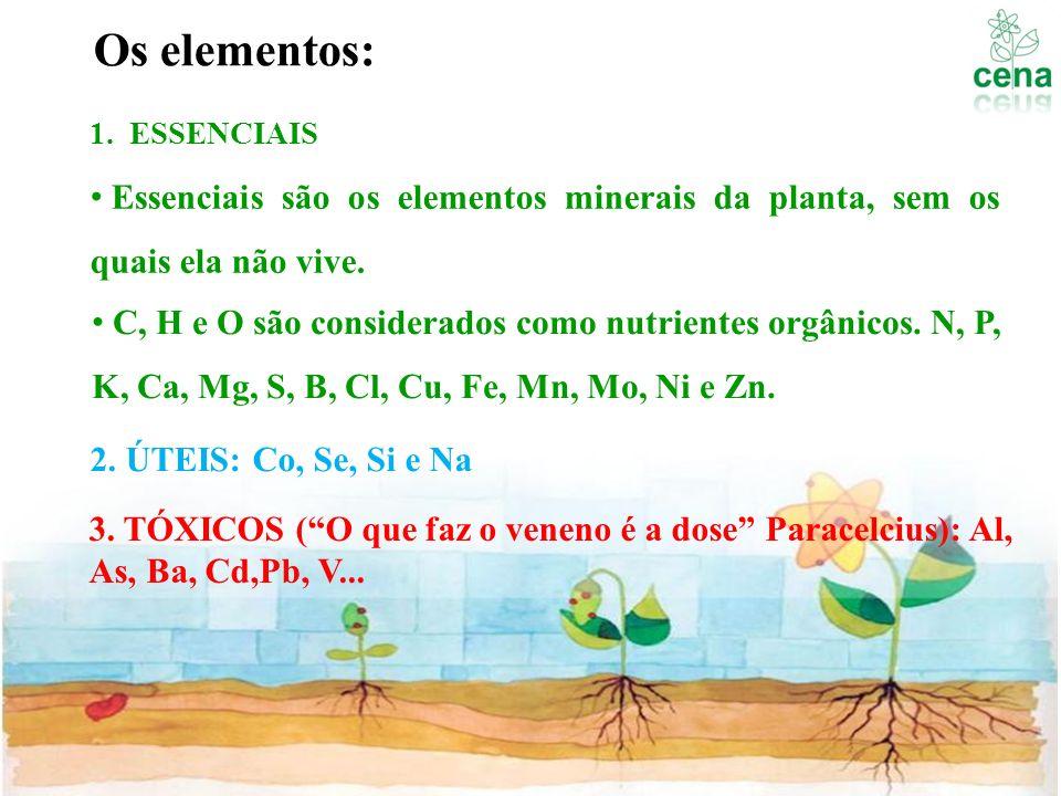 Os elementos: ESSENCIAIS. Essenciais são os elementos minerais da planta, sem os quais ela não vive.