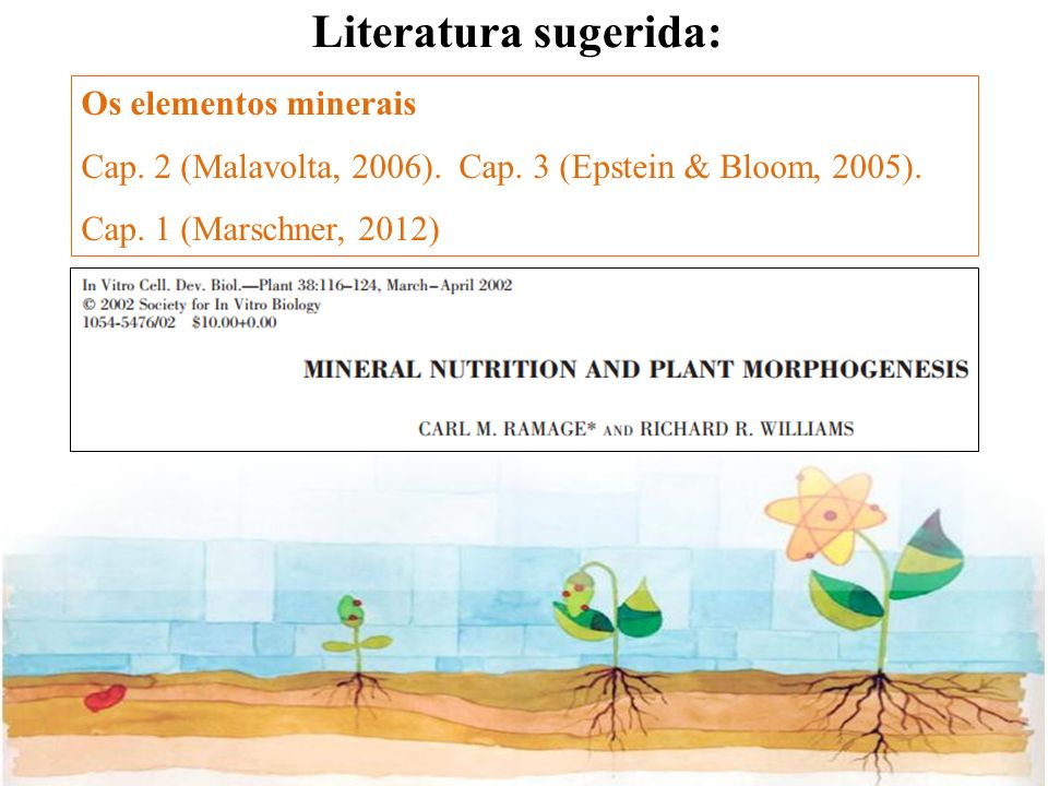 Literatura sugerida: Os elementos minerais