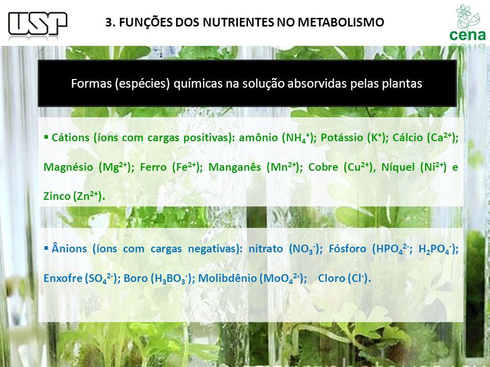 Formas (espécies) químicas na solução absorvidas pelas plantas
