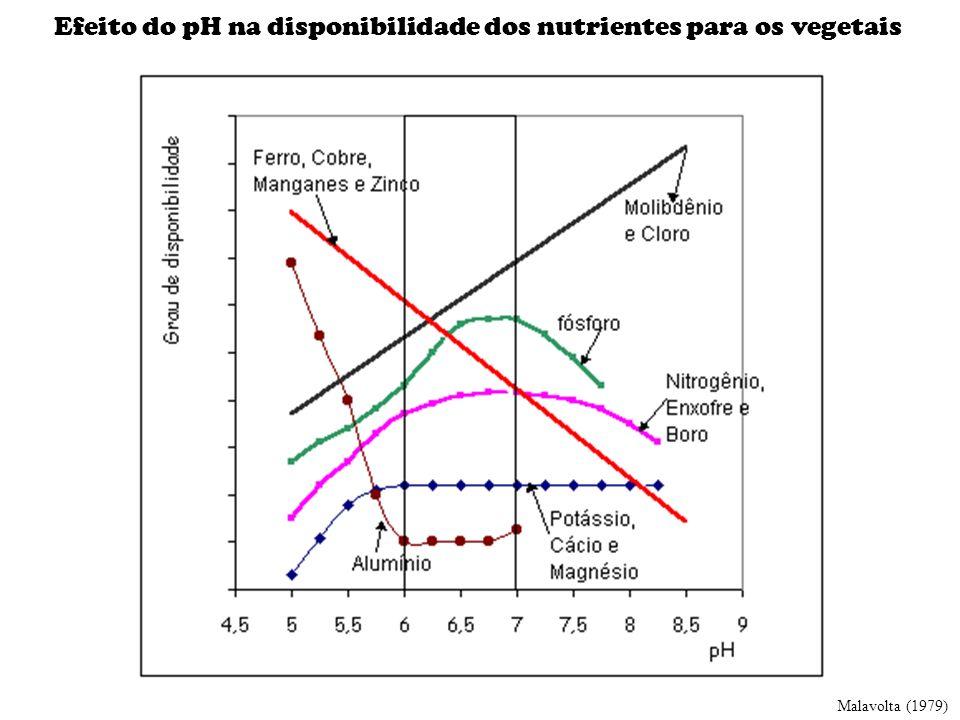 Efeito do pH na disponibilidade dos nutrientes para os vegetais