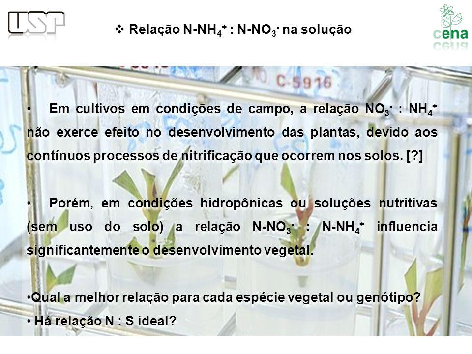 Relação N-NH4+ : N-NO3- na solução