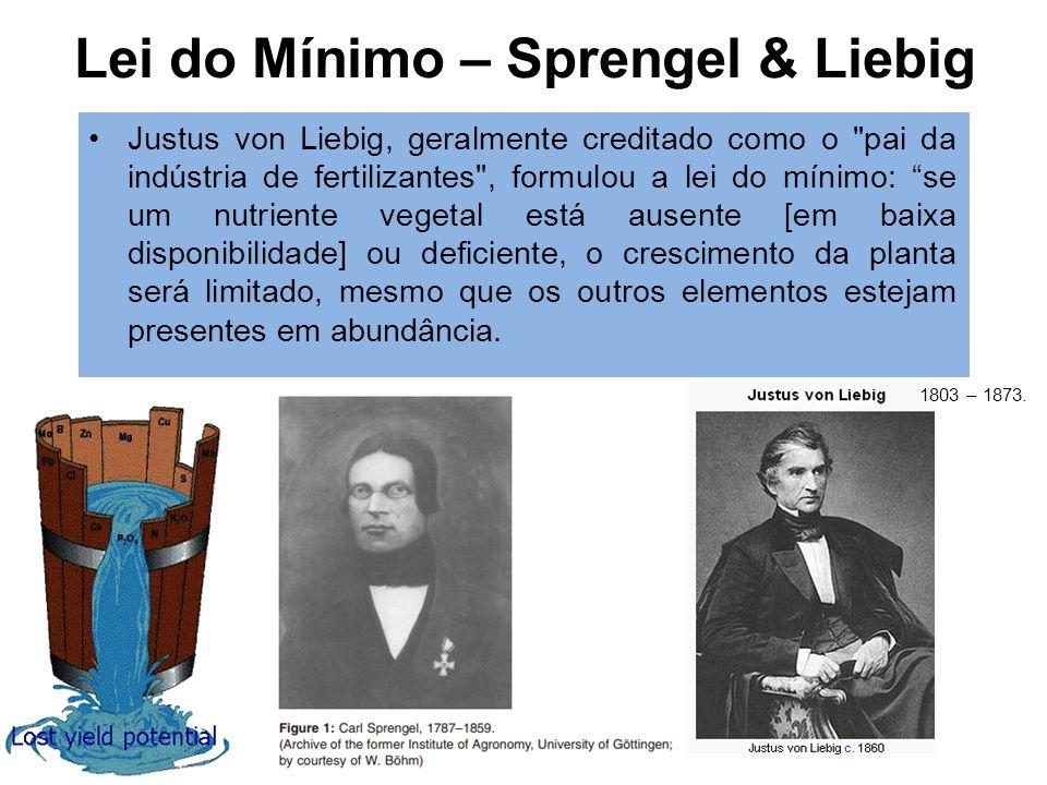 Lei do Mínimo – Sprengel & Liebig