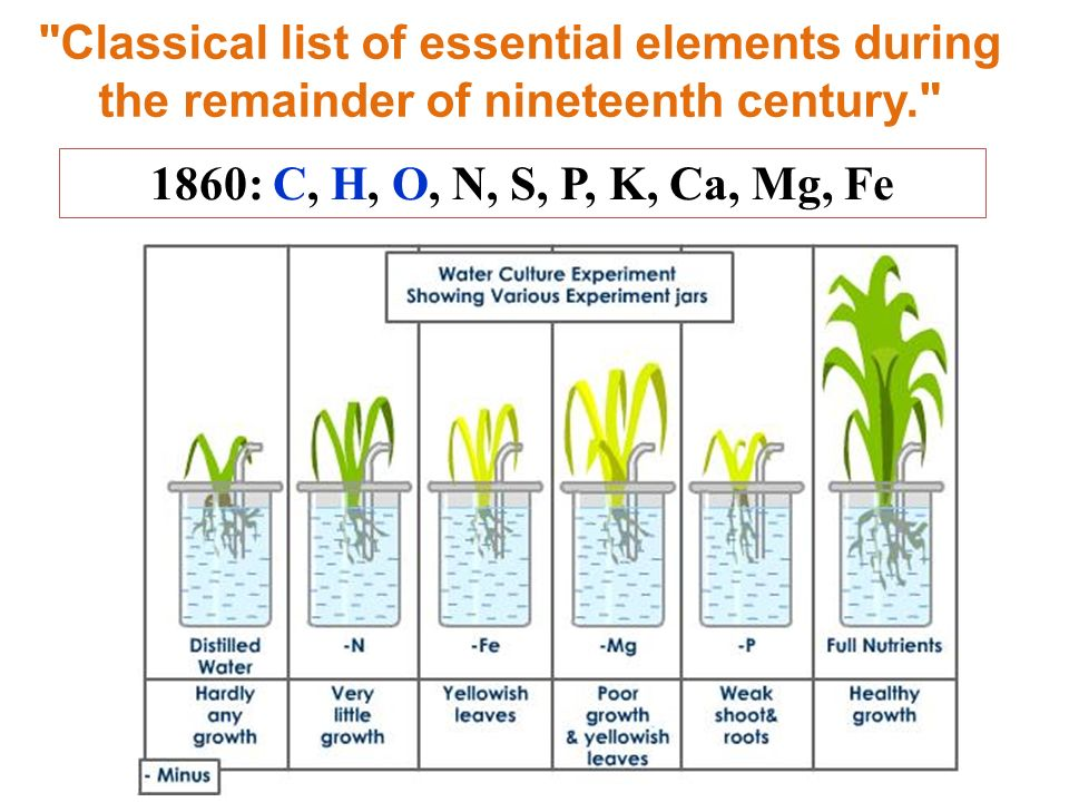 Classical list of essential elements during