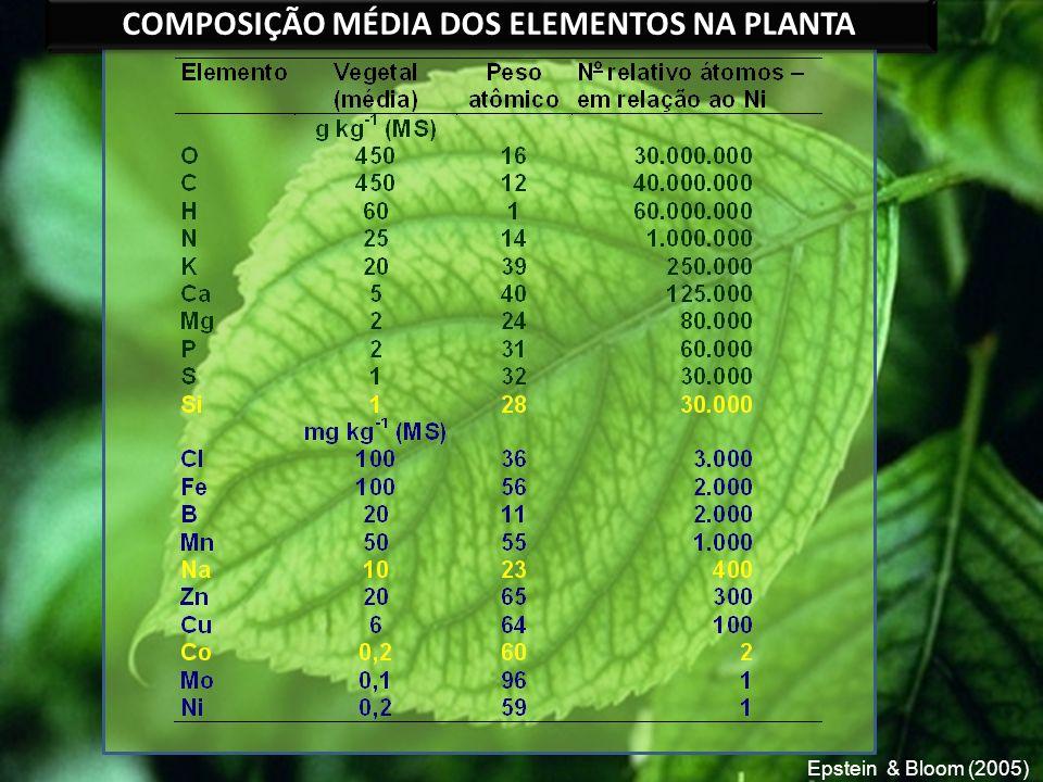 COMPOSIÇÃO MÉDIA DOS ELEMENTOS NA PLANTA