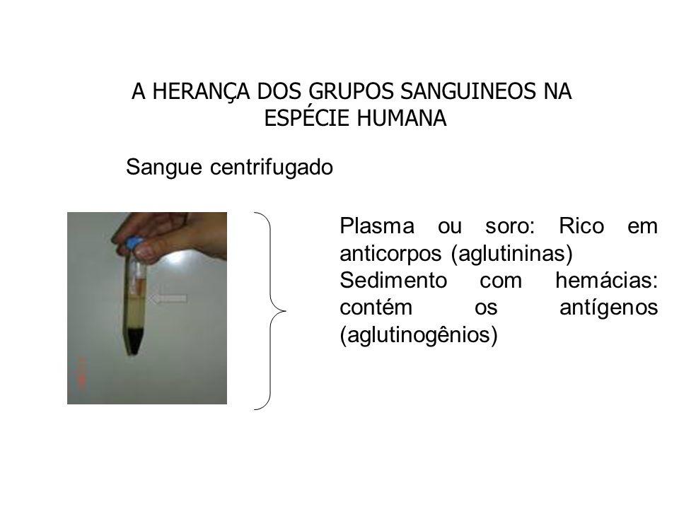 A HERANÇA DOS GRUPOS SANGUINEOS NA