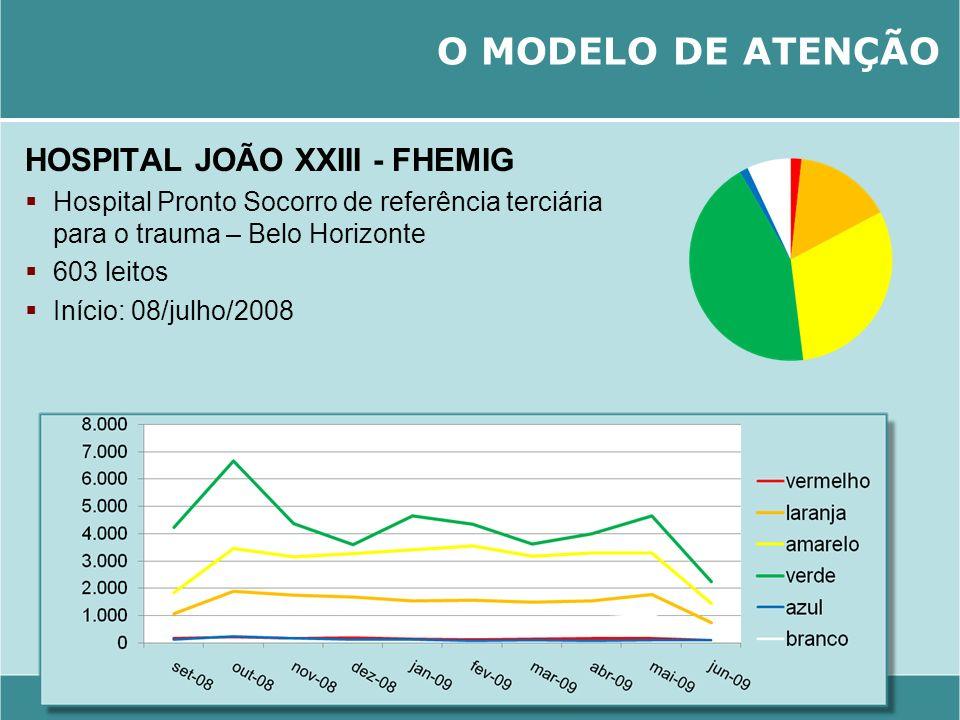 O MODELO DE ATENÇÃO HOSPITAL JOÃO XXIII - FHEMIG