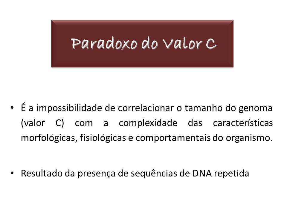 Paradoxo do Valor C