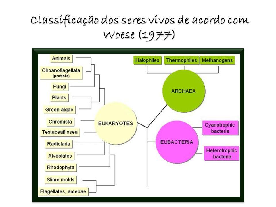 Classificação dos seres vivos de acordo com Woese (1977)