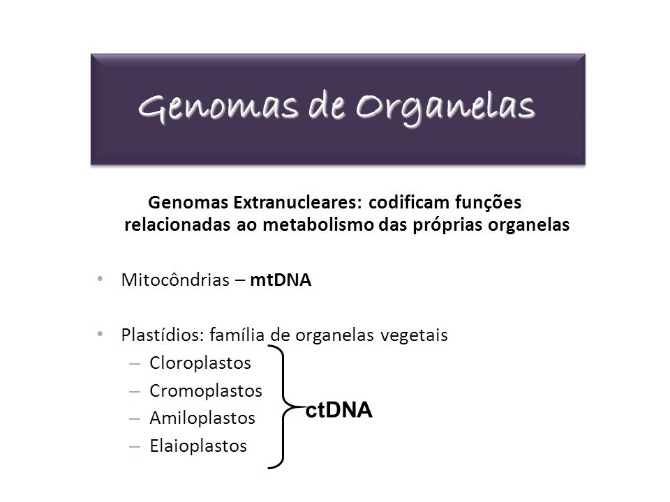 Genomas de Organelas ctDNA