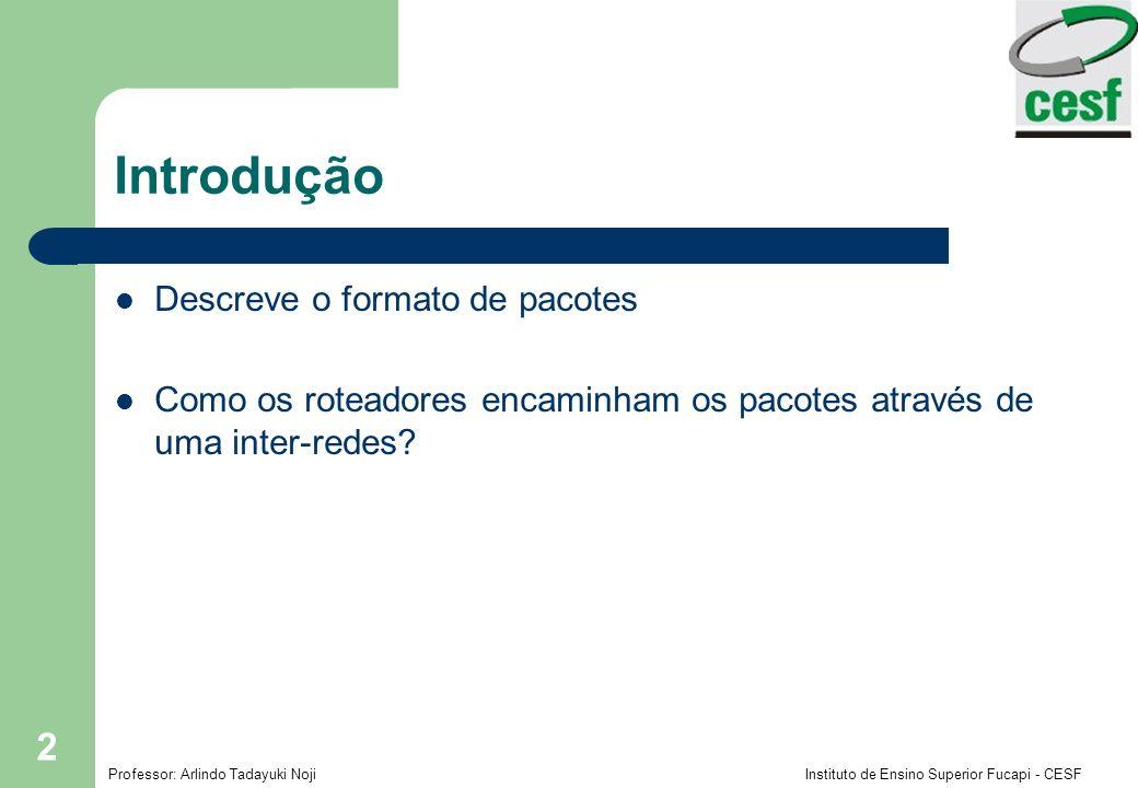 Introdução Descreve o formato de pacotes