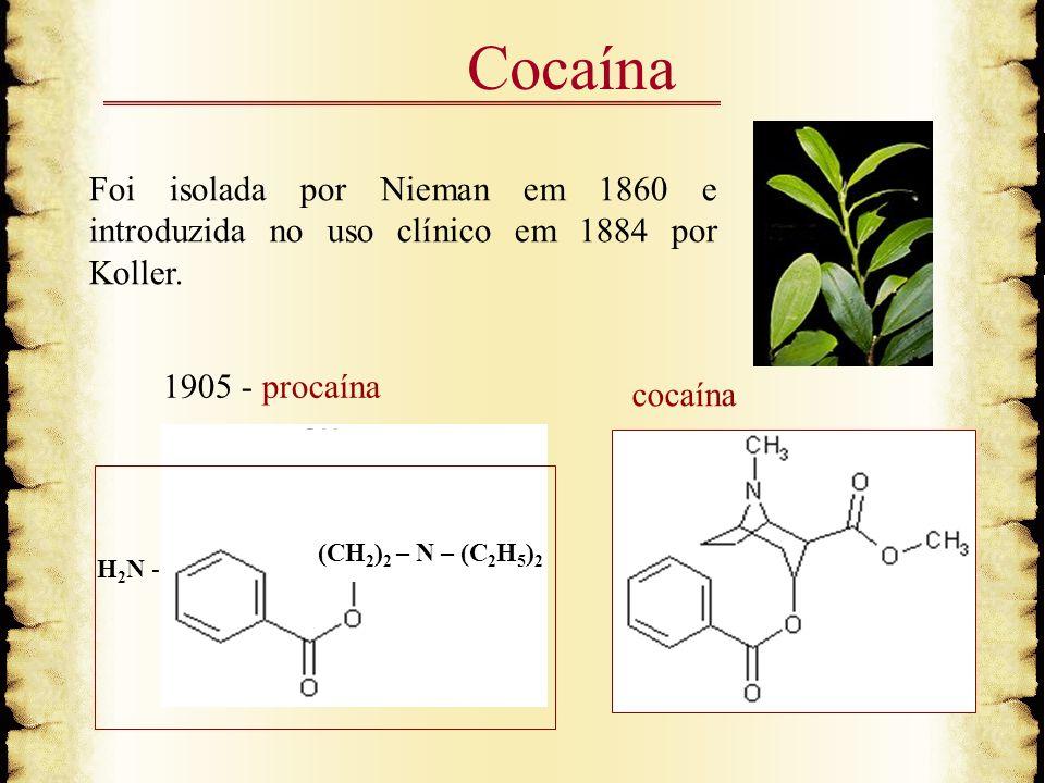 Cocaína Foi isolada por Nieman em 1860 e introduzida no uso clínico em 1884 por Koller. 1905 - procaína.