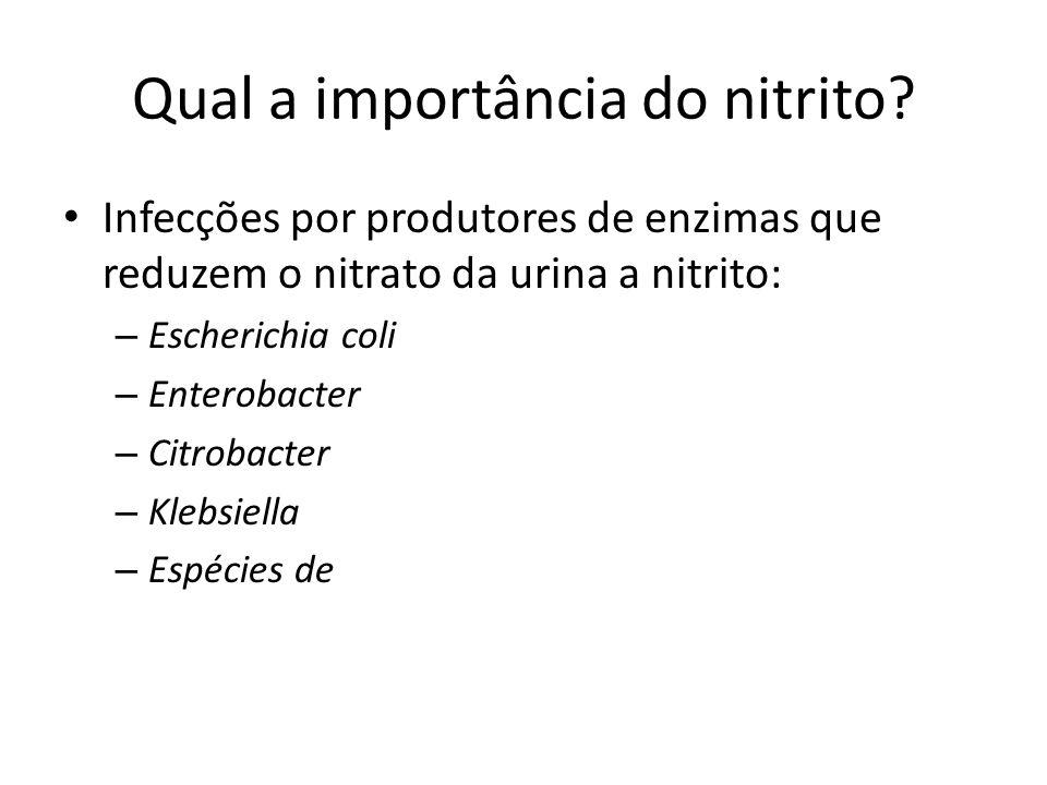 Qual a importância do nitrito