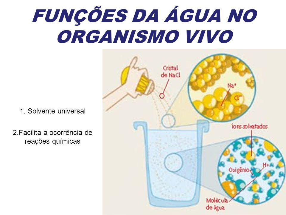 FUNÇÕES DA ÁGUA NO ORGANISMO VIVO
